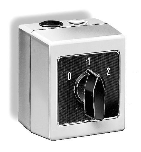 DS 2-2, Drehzahlum- und Ein-/Aus-Schalter