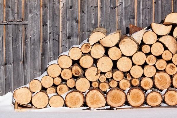 welches-brennholz-f-r-den-kamin-ist-das-beste